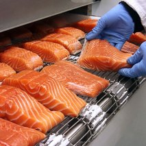 Solutions for Food Processing
